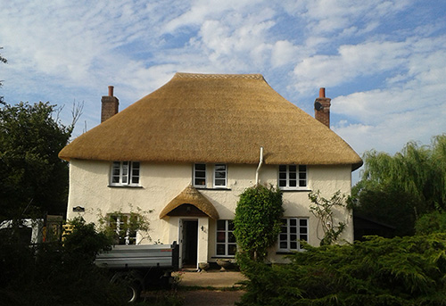 Thatch roof life span