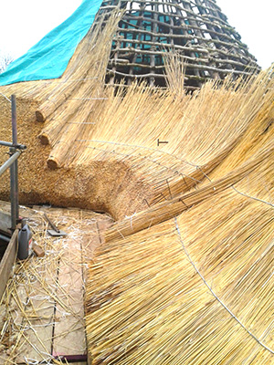 Water Reed Thatching Method