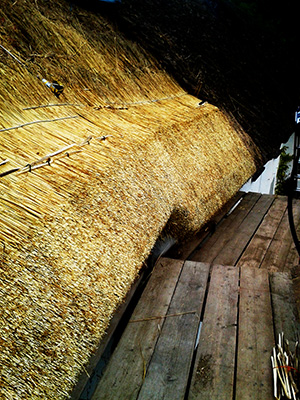 Wheat Reed Thatching Method